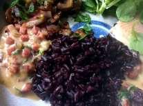 27.4.16 - Schwarzer Reis,Sauce,Feldsalat,Dessert (15)