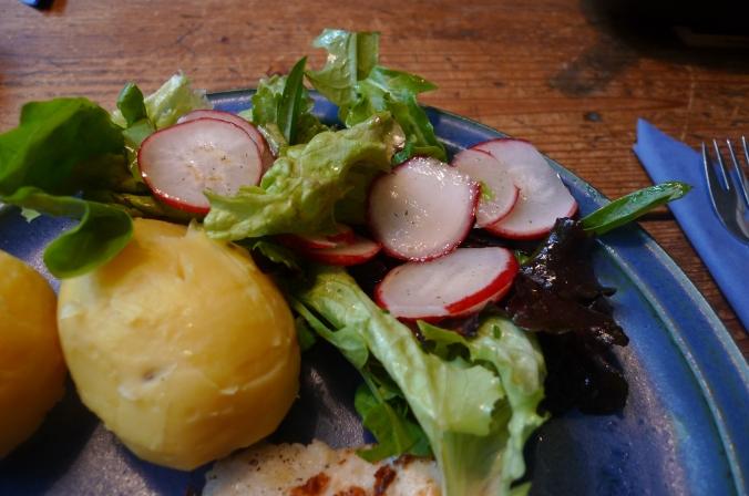 19.5.16 - Rotbarsch,Salate (10)
