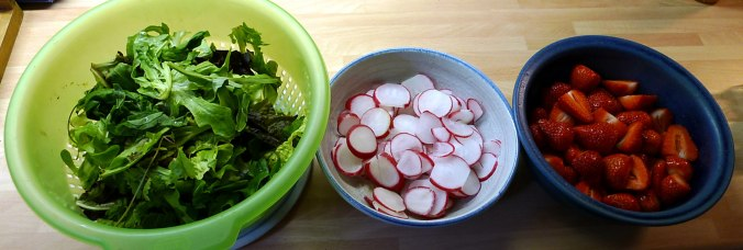 19.5.16 - Rotbarsch,Salate (3)