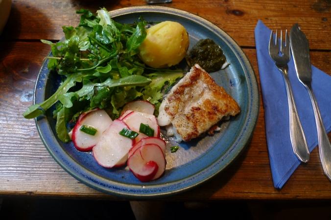 19.5.16 - Rotbarsch,Salate (7)