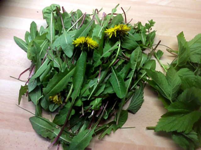 3.5.16 - Grüne Nudeln,Bärlauchpesto,Wildkräutersalat  (1e)