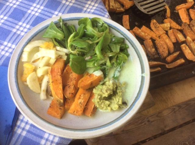 6.5.16 - Süßkartoffel,Fenchelsalat,Feldsalat,Guacamole,Joghurtdip (1)