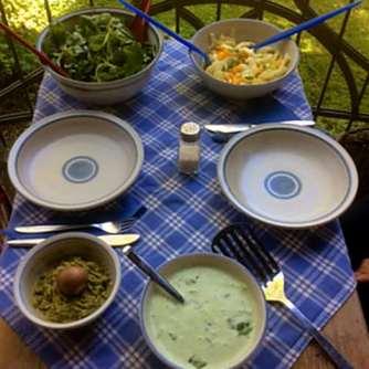 6.5.16 - Süßkartoffel,Fenchelsalat,Feldsalat,Guacamole,Joghurtdip (12)
