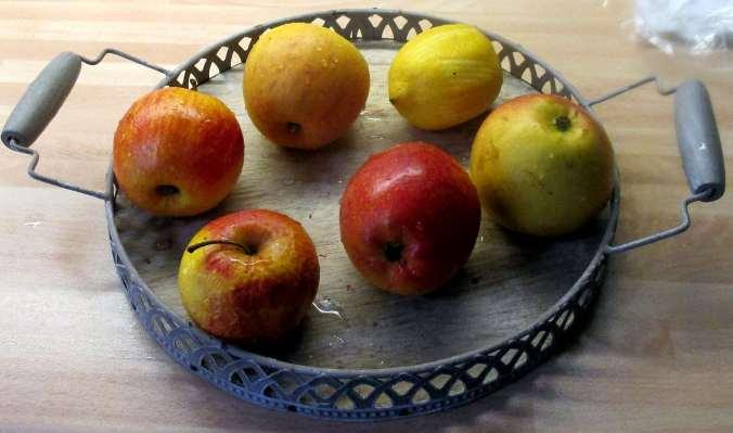 Apfelkompott (1).JPG