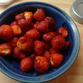 15.6.16 - Lachs,Spargel,Kartoffel,Erdbeeren (19)
