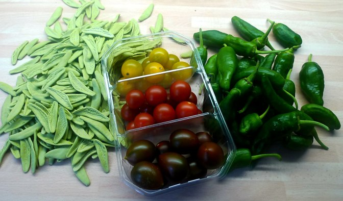 18.6.16 - Grüne Nudeln,Gemüse (4)