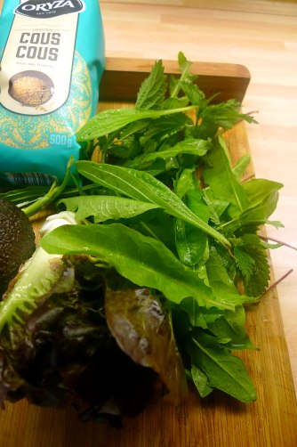 19.6.16 - Coucous,Wildsalat,Guacamole,Möhren (5)