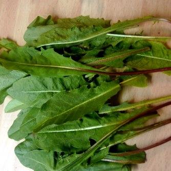 19.6.16 - Coucous,Wildsalat,Guacamole,Möhren (9)