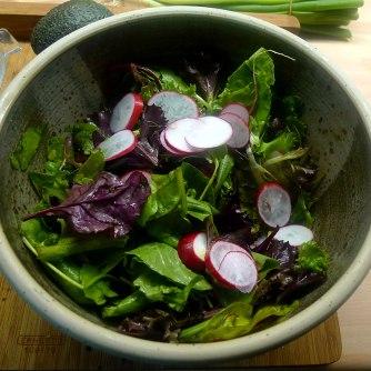 24.6.16 - Quinotto,Champignon,gebratener Fenchel,Pflücksalat,Dessert (13)