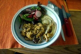 24.6.16 - Quinotto,Champignon,gebratener Fenchel,Pflücksalat,Dessert (16)