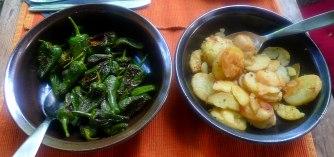 30.6.16 - Ofengemüse,Pimientos,Bratkartoffeln (11)