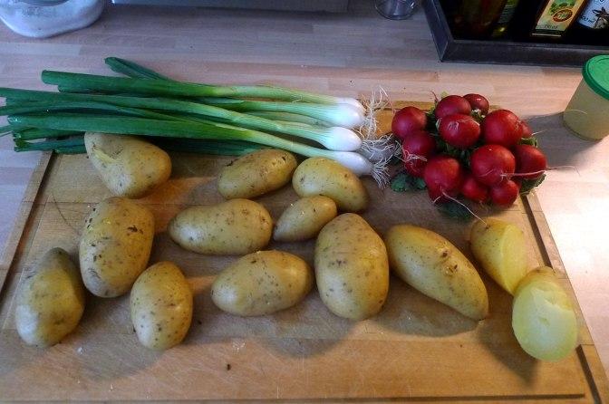 5.6.16 - Kabeljau,Kartoffelsalat (1d)