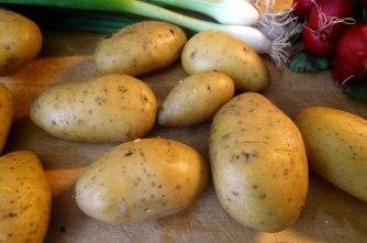 5.6.16 - Kabeljau,Kartoffelsalat (2)