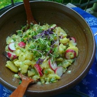 5.6.16 - Kabeljau,Kartoffelsalat (4a)
