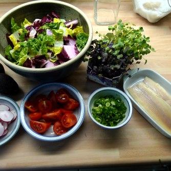 6.6.16 - Zitronenkartoffeln,Forelle,Salat (10)