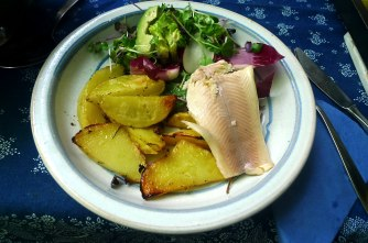 6.6.16 - Zitronenkartoffeln,Forelle,Salat (15)