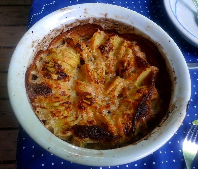 11.7.16 - Kartoffelkgratin,Salate,vegetarisch (2)