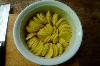 11.7.16 - Kartoffelkgratin,Salate,vegetarisch (5)