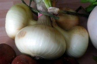 13.7.16 - Mairübchen,Kartoffelstampf,Bratwurst (4)