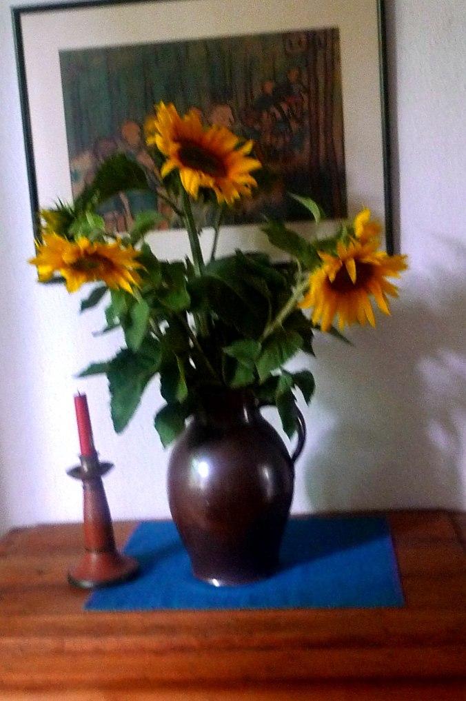 16.7.16 - Kirschernte und Sonnenblumen vom Feld (1)