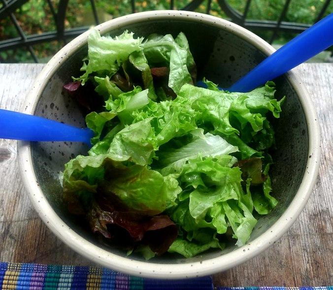 Graupen Risotto,Salat (7)
