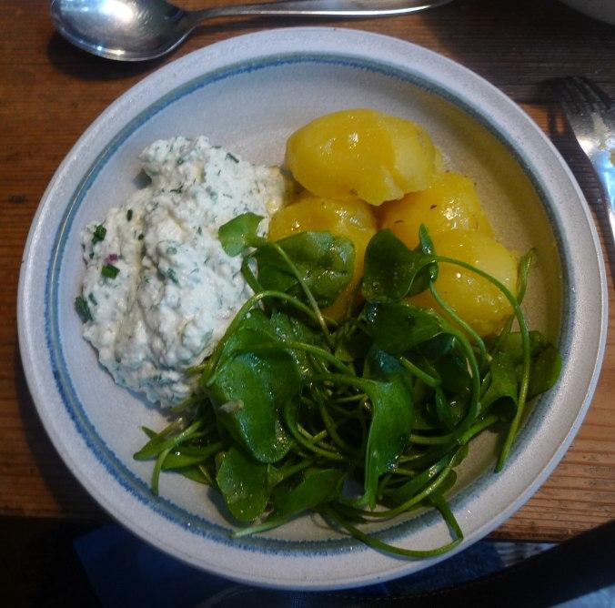 Quark,Kartoffeln,Postelein,Leinöl,vegetarisch (1).JPG