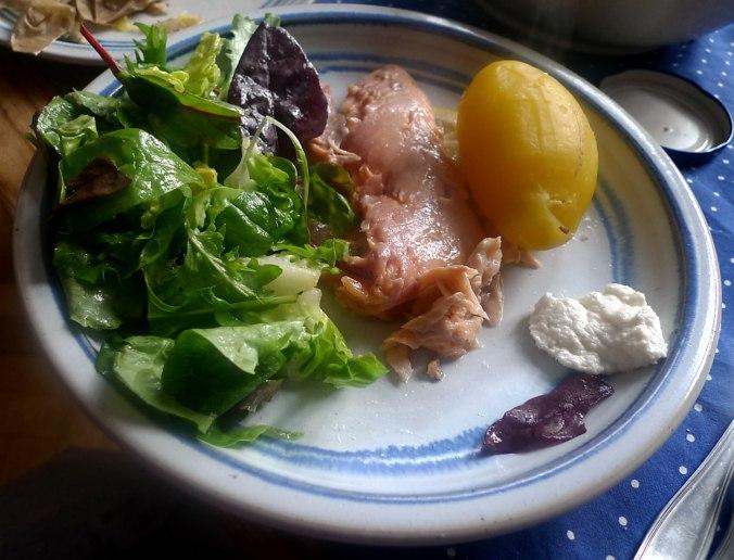 lachsforellemischsalatpellkartoffeln-17