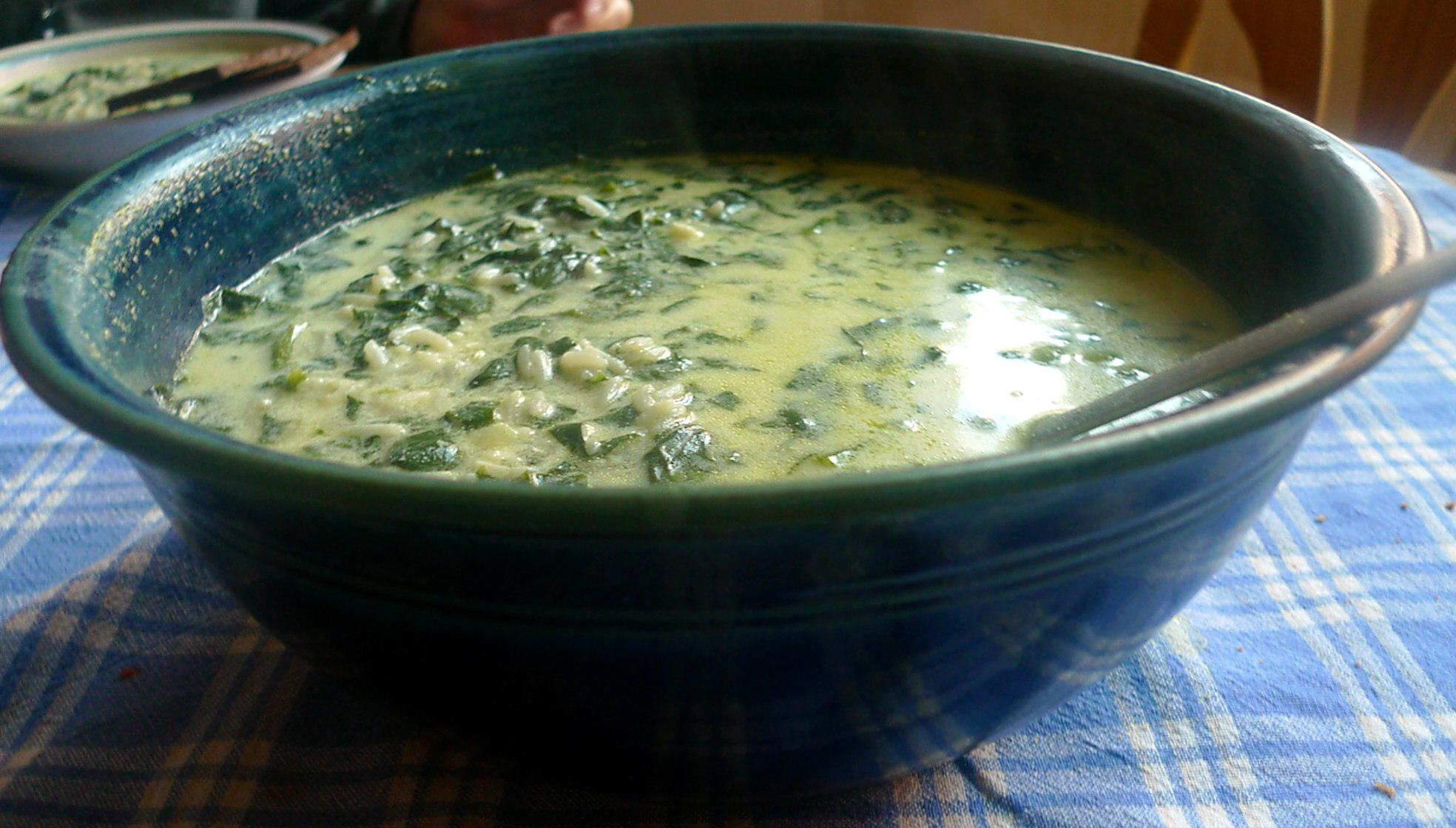 spinat-joghurt-suppevegetarisch-10