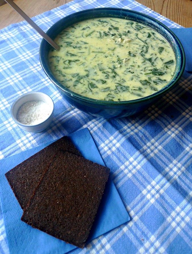 spinat-joghurt-suppevegetarisch-11