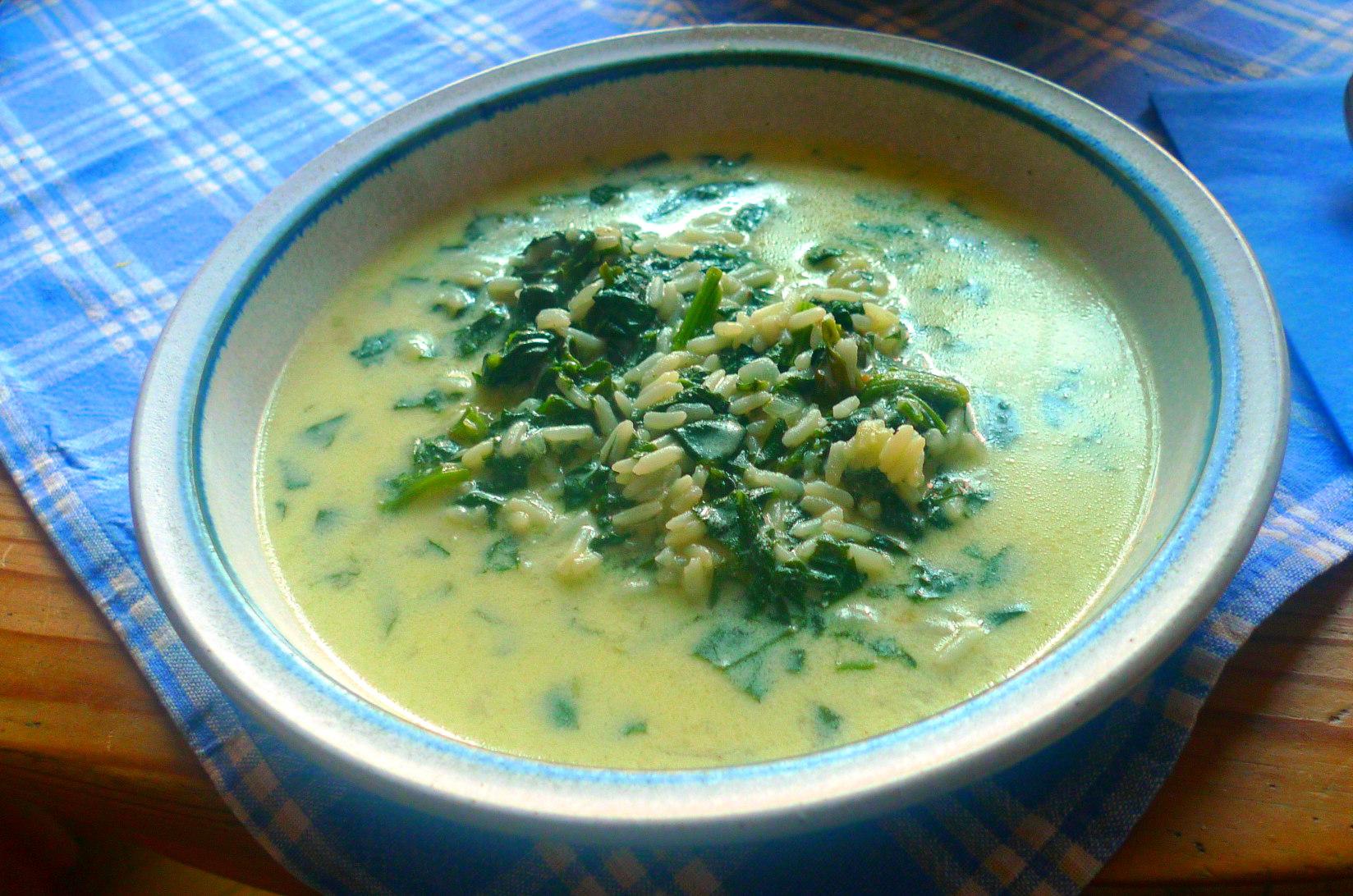 spinat-joghurt-suppevegetarisch-12