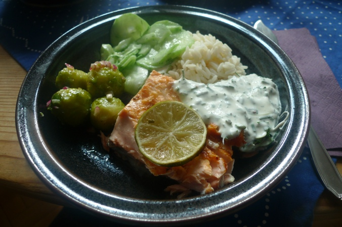 lachsreisrosenkohlsalatgurkensalat-11