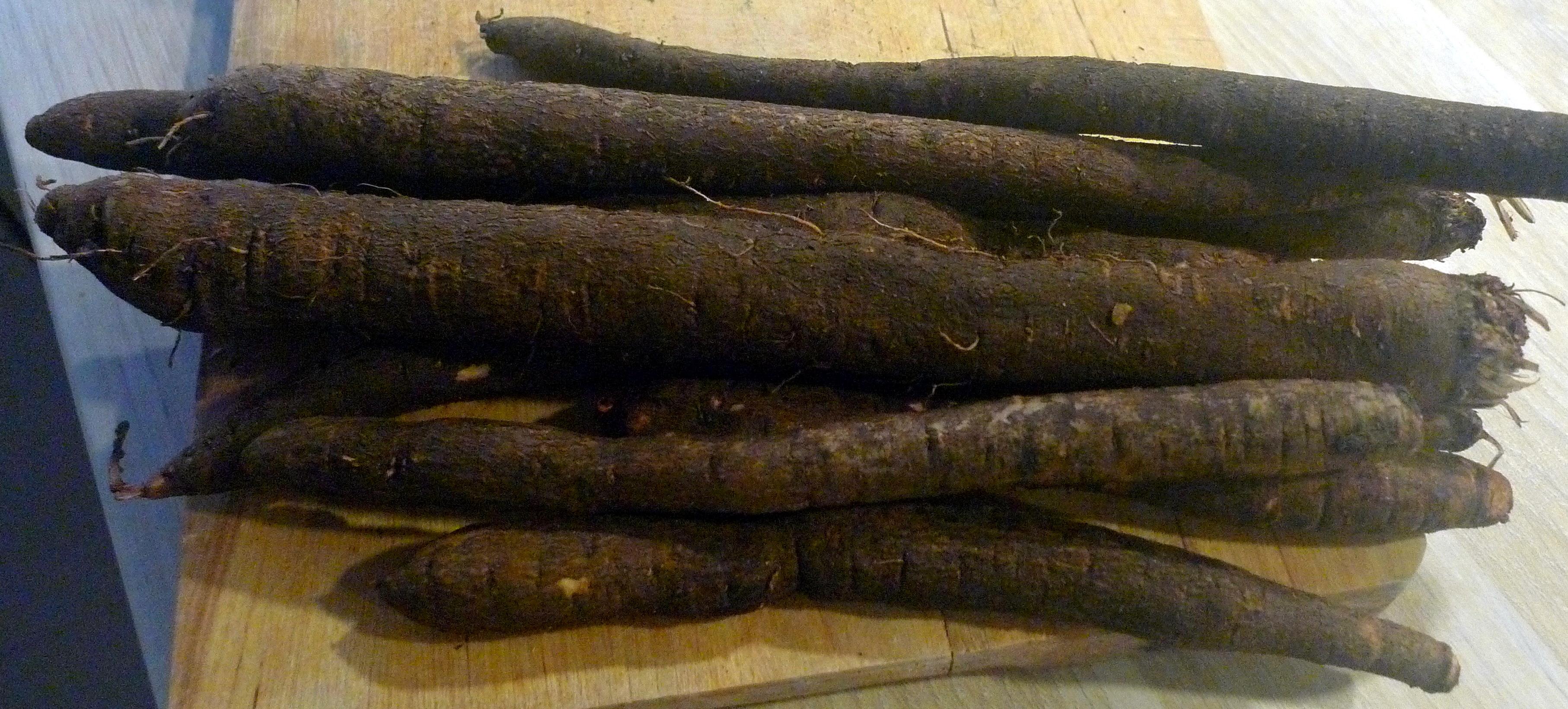 schwarzwurzel-mit-kasesoseofenkartoffelnfeldsalateivegetarisch-1f