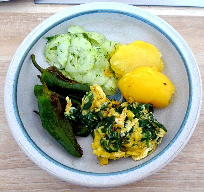 spinat-ruhreipimientospellkartoffelngurkensalat-13