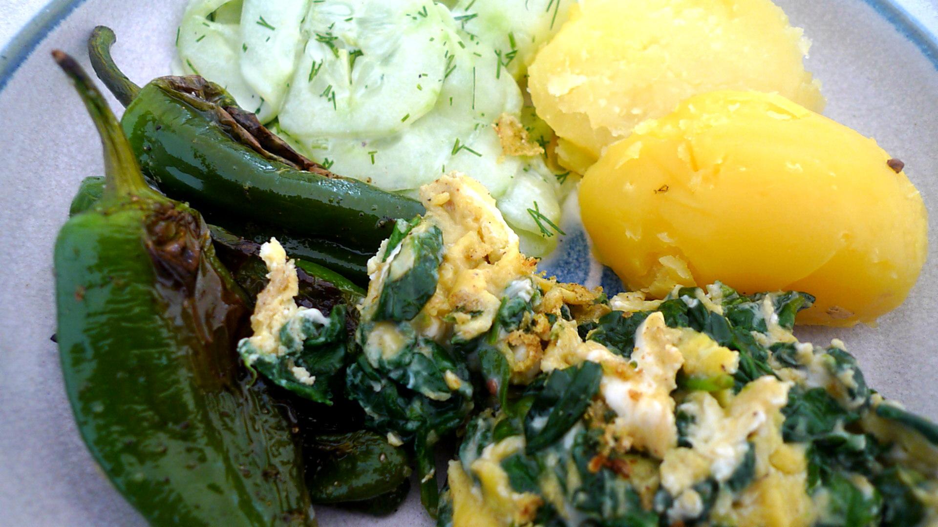 spinat-ruhreipimientospellkartoffelngurkensalat-14