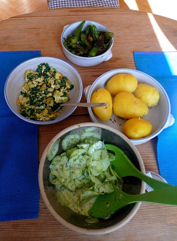 spinat-ruhreipimientospellkartoffelngurkensalat-2