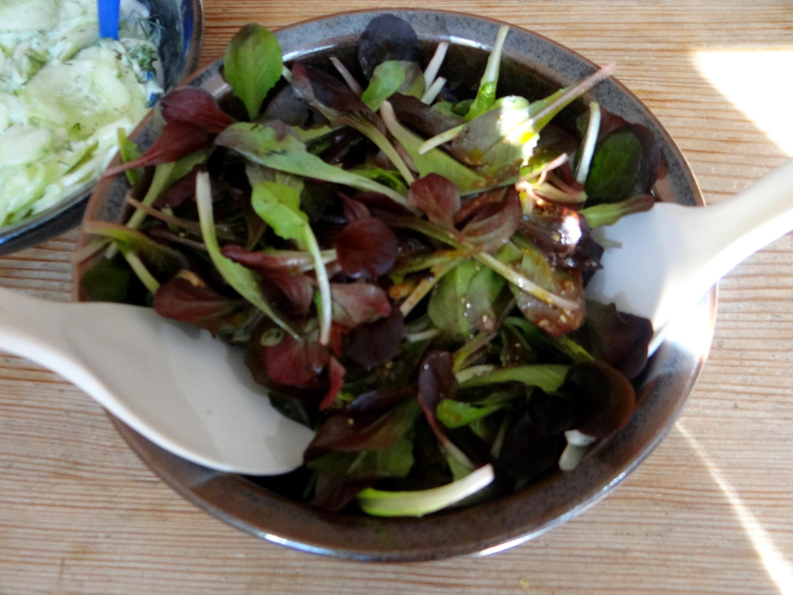Bärlauchgnocchis,Tomatensugo,Salate (13)