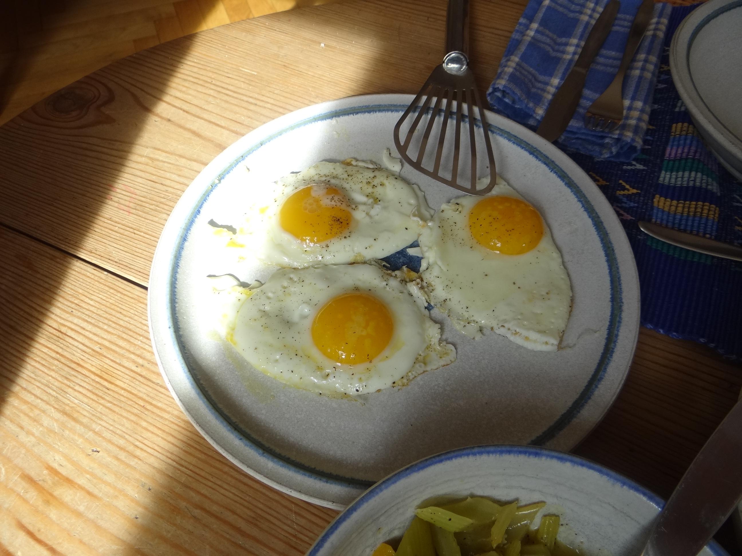 Pastinaken-Kartoffelstampf,Bleichsellerie Gemüse,Salat,Spiegelei (20)