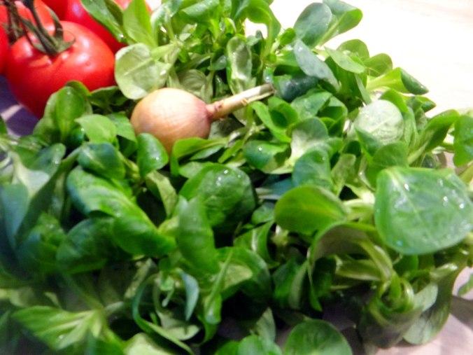 Seelachs,Tomatensalat,Feldsalat (11)