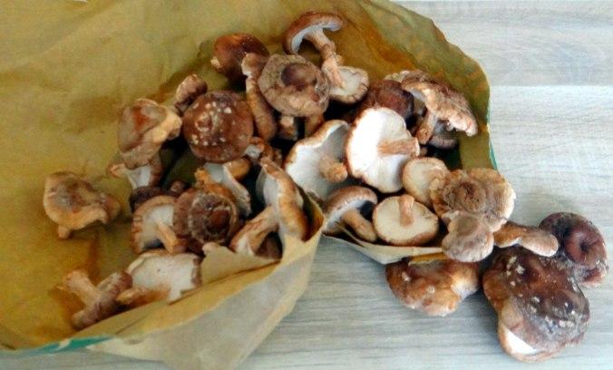 Shitake,Champignon,grüner Spargel,Pellkartoffeln,Rosins Kuchen (1f)