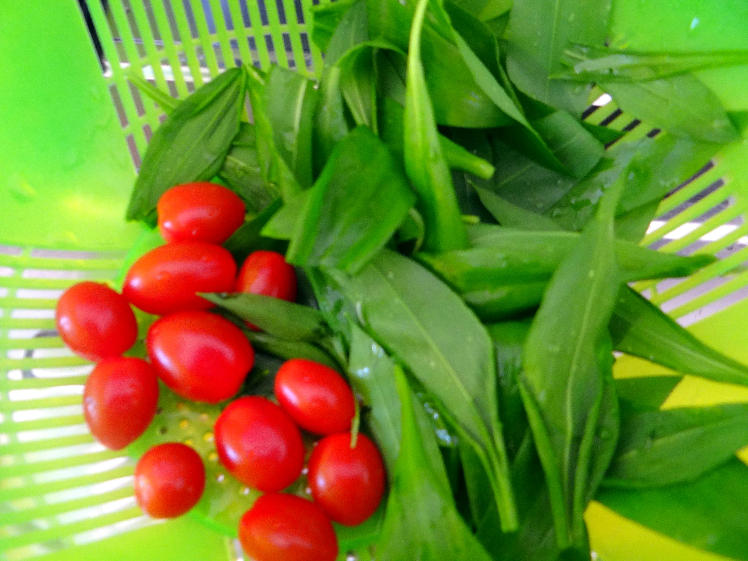 Shitake,Champignon,grüner Spargel,Pellkartoffeln,Rosins Kuchen (9)