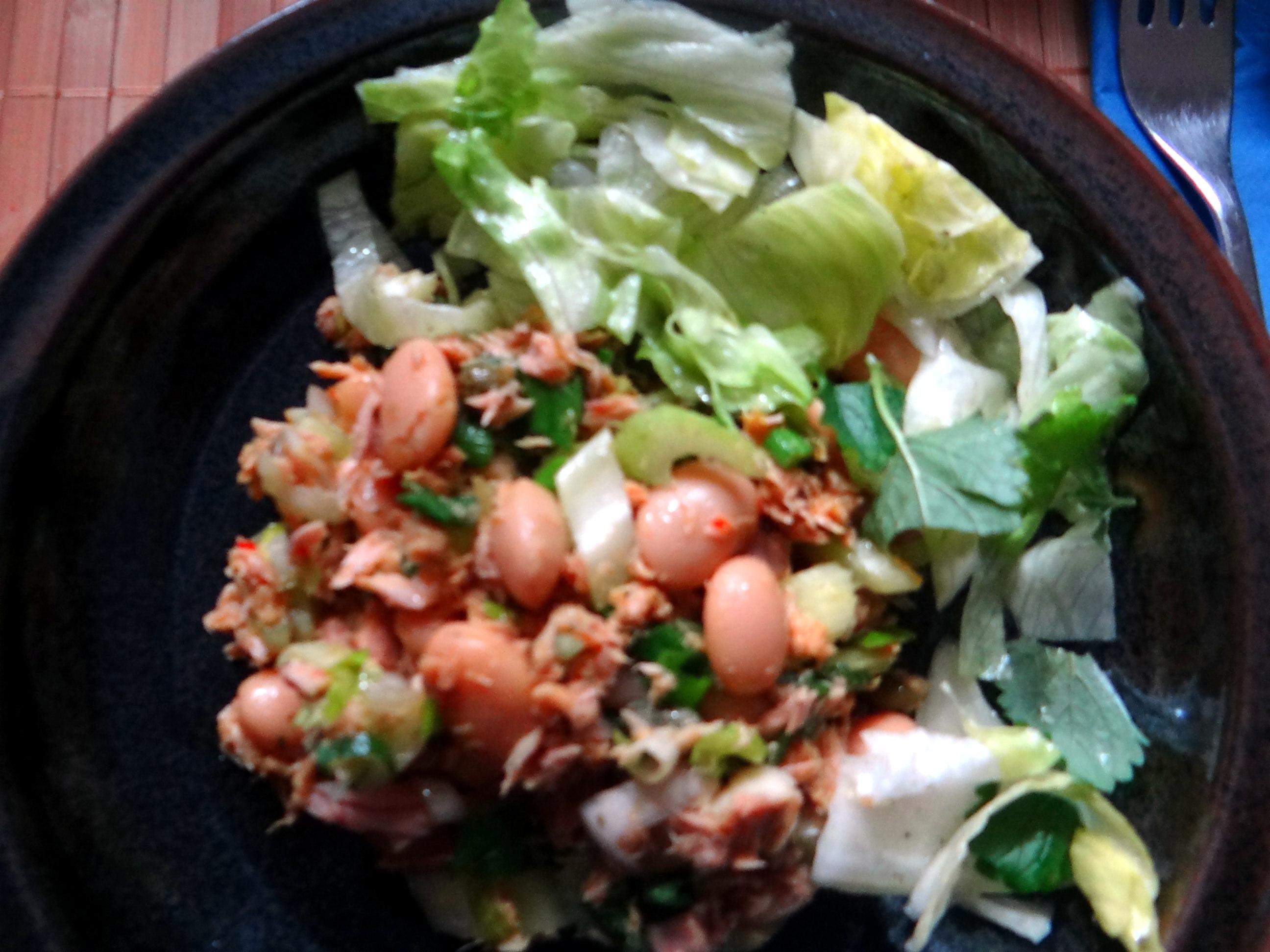 Bohnen,Thunfisch,Sellerie Salat (3)
