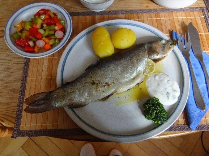 Forelle,Kartoffeln,Salat,Dips (1)
