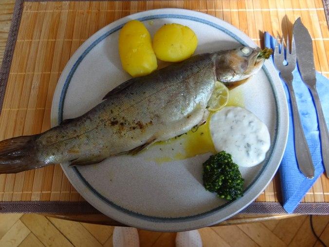 Forelle,Kartoffeln,Salat,Dips (15)