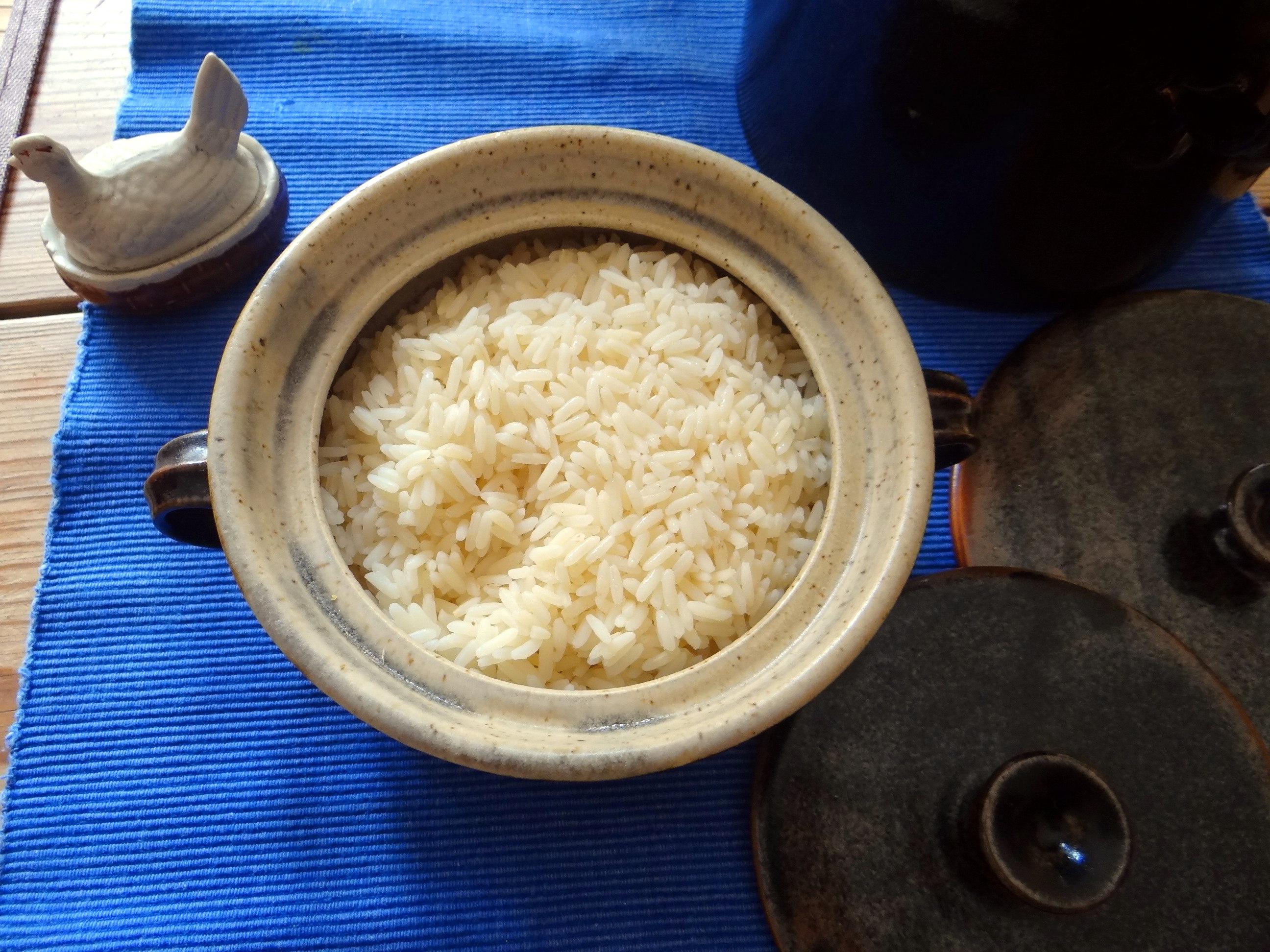 Hühnerfrikassee,Reis (24)