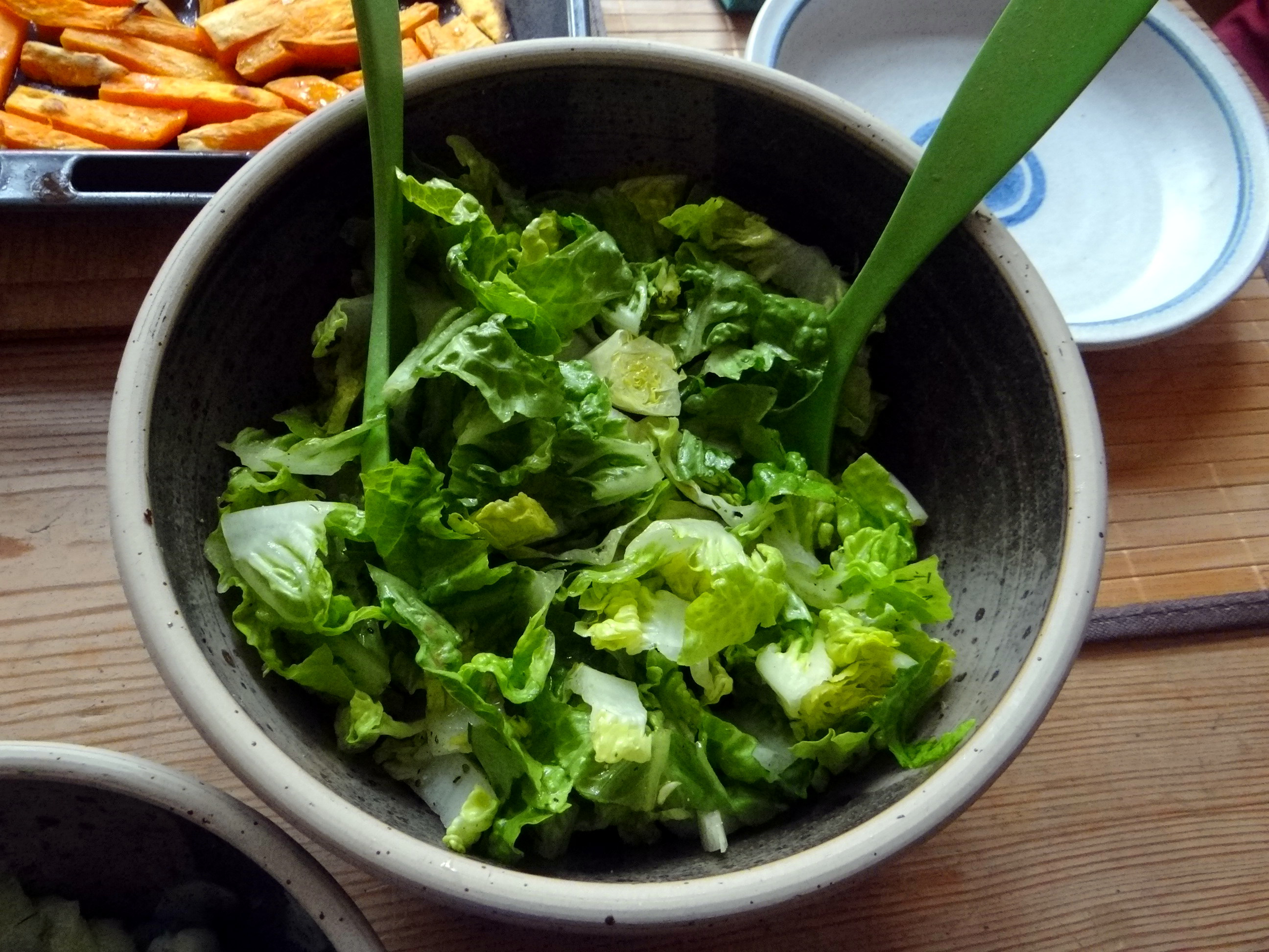 Süßkartoffel Pommes,Salate,Obszsalat (12)