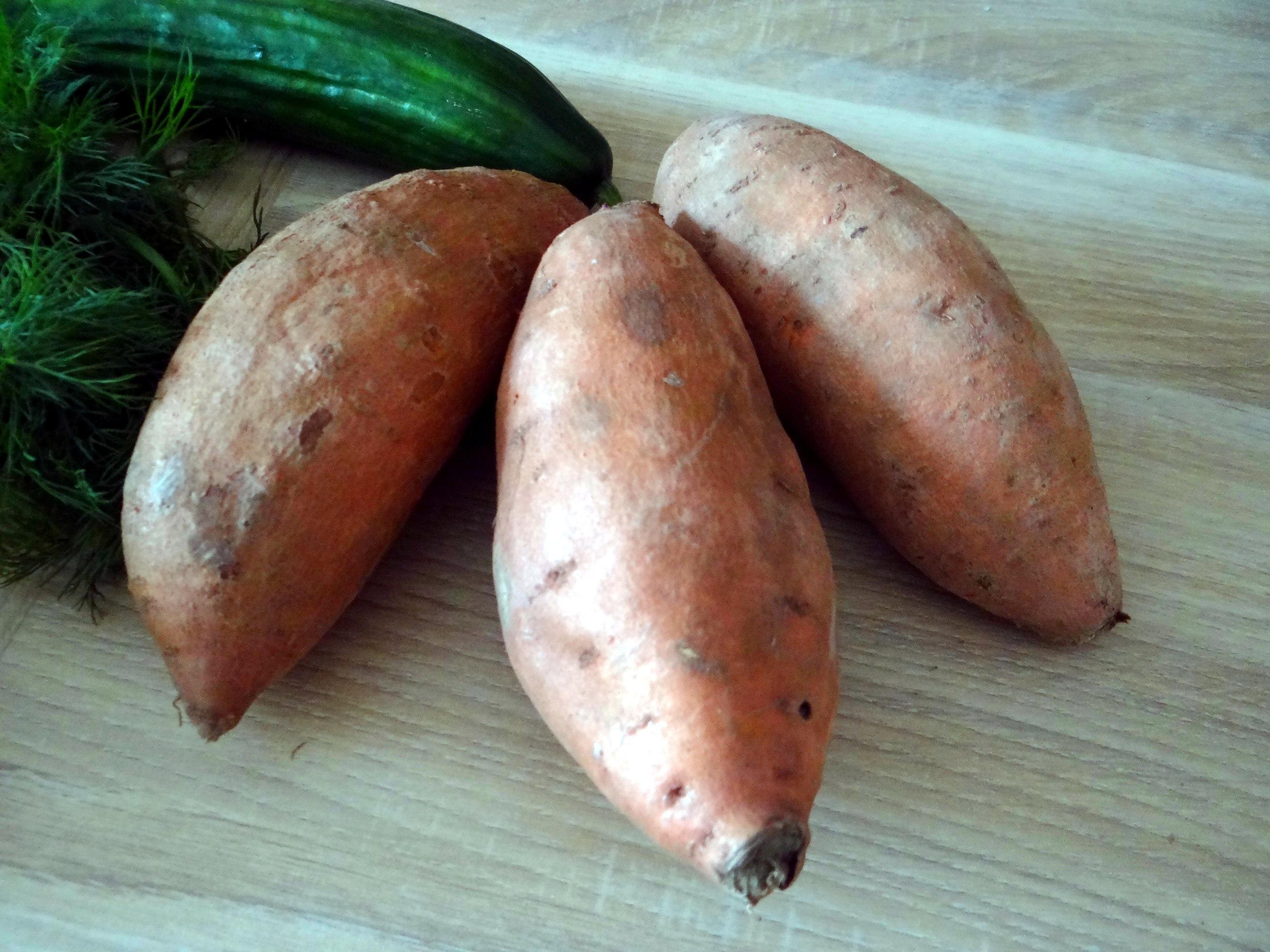 Süßkartoffel Pommes,Salate,Obszsalat (6)