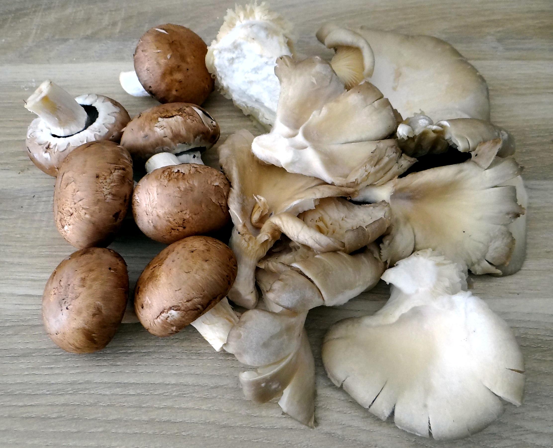 Shitake,Champignon,Hackbällchen,Eisbergsalat (4)