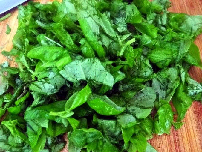 Basilikum Gnocchi mit Tomatensauce und Salaten (14)