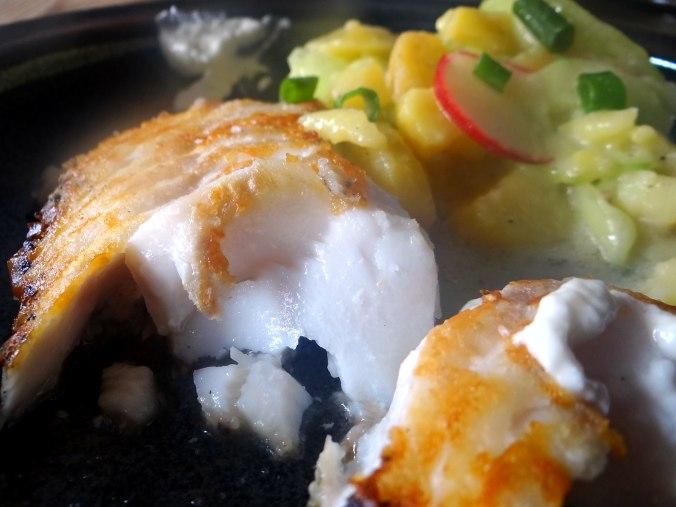 Kabeljau,Schwäbischer Kartoffelsalat (17)