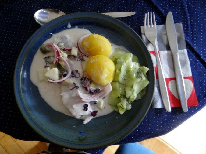 Marinierte Matjes,Gurkensalat,Pellkartoffeln,Crepe (2)